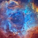 NGC2237 - Rosette Nebula - SHO,                                scottacrosby