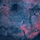 IC 1396 en HOO,                                Georges