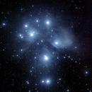 Angelic Apparition of Star Dust,                                Scott Denning
