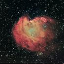 NGC 2174 Monkey Head,                                Stefano Ricci