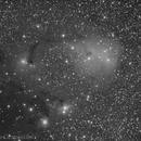 IC 447 (working in progress),                                Maicon Germiniani