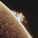 Solar Prominence 2021-06-16,                                Loran Hughes