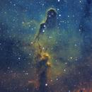IC1396 The Elephant Trunk,                                John Kanouse