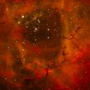 Rosette Nebula close-up (OSC), NGC 2244 (Caldwell 50),                                Daniel
