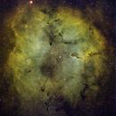 IC1396,                                Seymore Stars