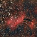 NGC4628  The Prawn Nebula,                                Ray Heinle