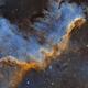 Cygnus Wall - SHO,                                Emil Andronic
