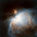 M42 BiColor,                                Christopher Maier