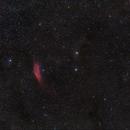 California Nebula to the Pleiades ,                                Dan Watt
