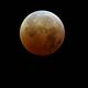 Moon Eclipse,                                Sonia Zorba