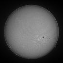 Sun in H-Alpha - 2020.12.01 (Full disk),                                Arne Danielsen