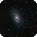 M33,                                Martijn van Seggelen