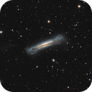 First light C8EdgeHd +red f/7 Ngc3628,                                Maxime Tessier