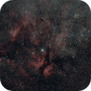 Sadr region, gamma Cygni nebula and the Crescent nebula,                                Ian Dixon
