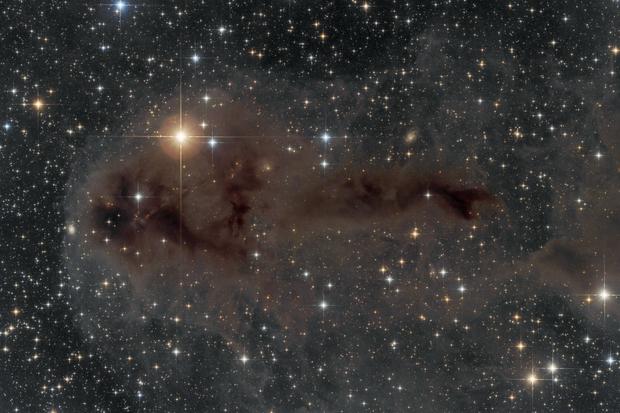 LDN1251 Angler fish nebula,                                Péter Feltóti