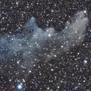 Witch Head Nebula (IC 2118),                                Michelle Bennett