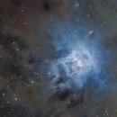 NGC 7023 ASI294/Pentax K3ii,                                pete_xl