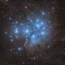 M45 The Pleiades - Yes, again!,                                Michael Feigenbaum