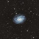 NGC 300,                                Casey Good