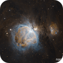M42 in broadband and narrowband,                                TobiasLindemann
