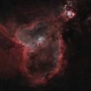 Heart Nebula Bi-color,                                Rodd Dryfoos