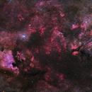 Gems of Cygnus,                                David McGarvey