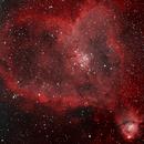 Heart Nebula,                                Robin Manford