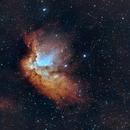 NGC 7380 - Wizard Nebula,                                Claudio Nunez
