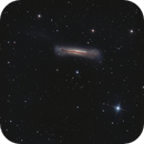 M65-M66-NGC3628 (Leo Triplet),                                Giorgio Ferrari