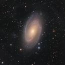 M81,                                Jan Sjoerd de Vries