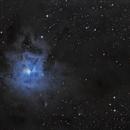 Iris Nebula - OSC + Mono Luminance,                                Jonathan W MacCollum