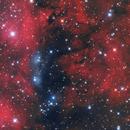 NGC 6914,                                Davide Coverta