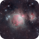 Deep M42,                                Palmito