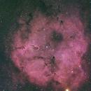 """IC1396,                                Makoto""""G-H""""Shindou"""
