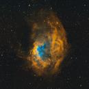 Lower's Nebula,                                Andrew Burwell
