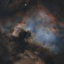 North American Nebula_NGC 7000,                                photoman888
