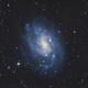 NGC 300 - Spiral Galaxy in Sculptor (DSS v1),                                Martin Junius
