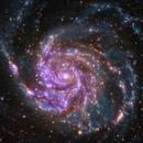 M 101 (Multiwavelength composite image),                                DetlefHartmann