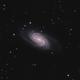 NGC2903,                                Derek Mellor