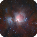 The Orion Nebula (Revisited),                                Paul Ng