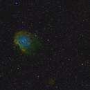 Monkeyhead Nebula in SHO,                                Robert Huerbsch