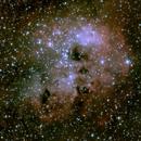IC410 Tadpoles,                                Jaysastrobin