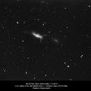SN 2014G NGC 3448,                                Rauno Päivinen