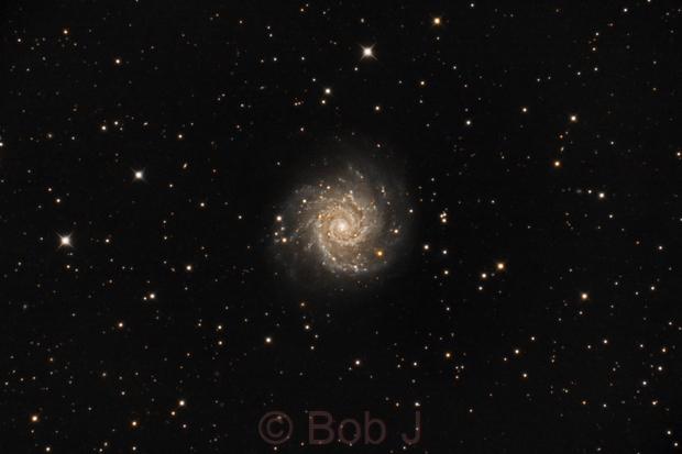 M74,                                Bob J