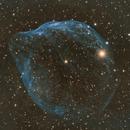 SH2-308 Dolphin Nebula,                                sebastian soto qu...