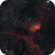 Tulip Nebula,                                RPrevost