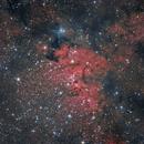 Sh2-155 Cave Nebula Ha,                                Manel Martín Folch