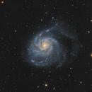 M101 Pinwheel Galaxy,                                Ezequiel
