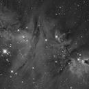 Cone Nebula (NGC2264) in Hα,                                Jose Carballada