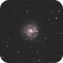 NGC3184,                                Marcel-Lambin